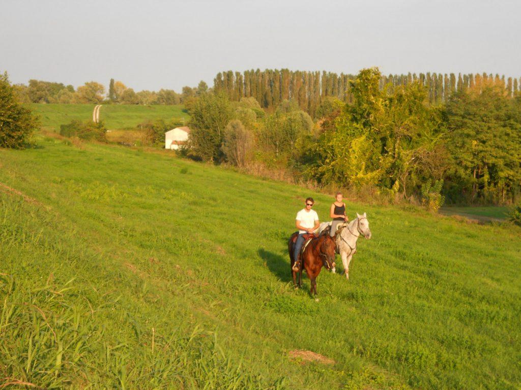 Adige e cavalli