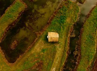 delta del Po e Zucchero: Voci